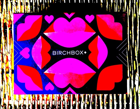birchbox-february-2017-box-reveal-box-picture